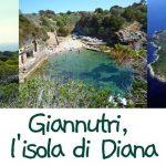 Escursione a Giannutri, l'isola di Diana